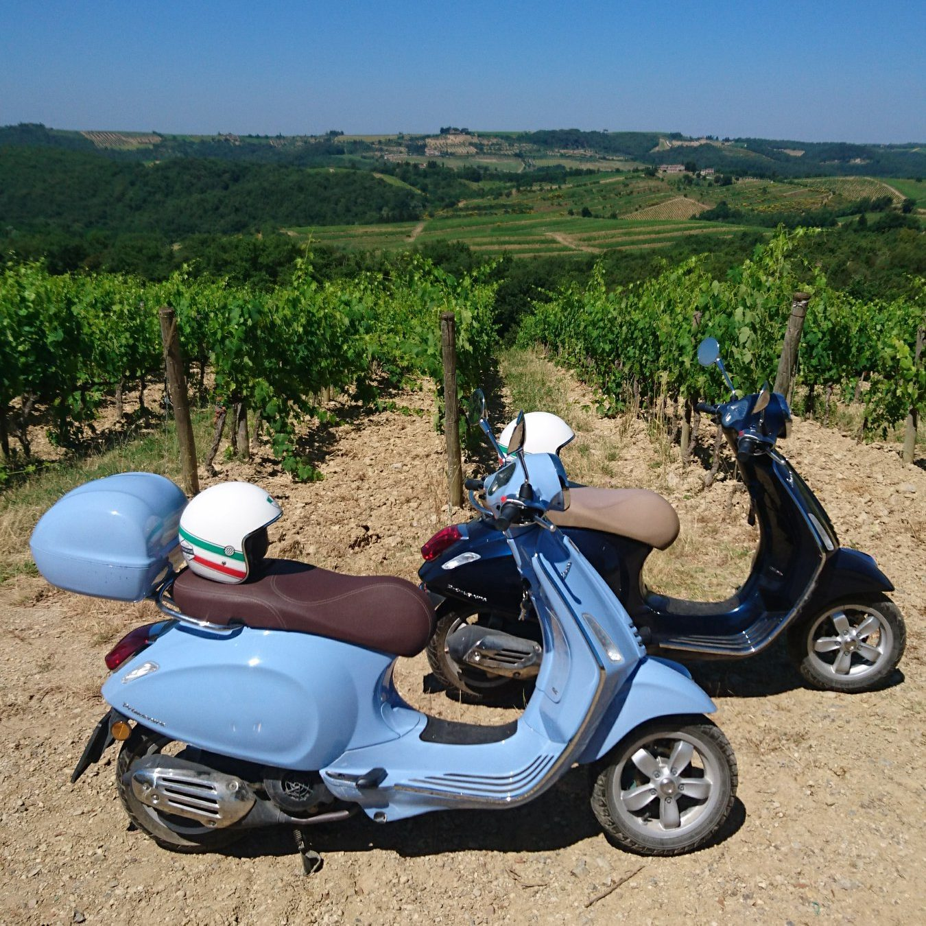 Real freedom in the vineyards in tuscany