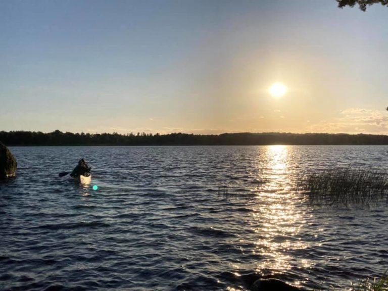 Les « Monkeys on the lake »